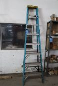 8' WERNER FIBERGLASS STEP LADDER