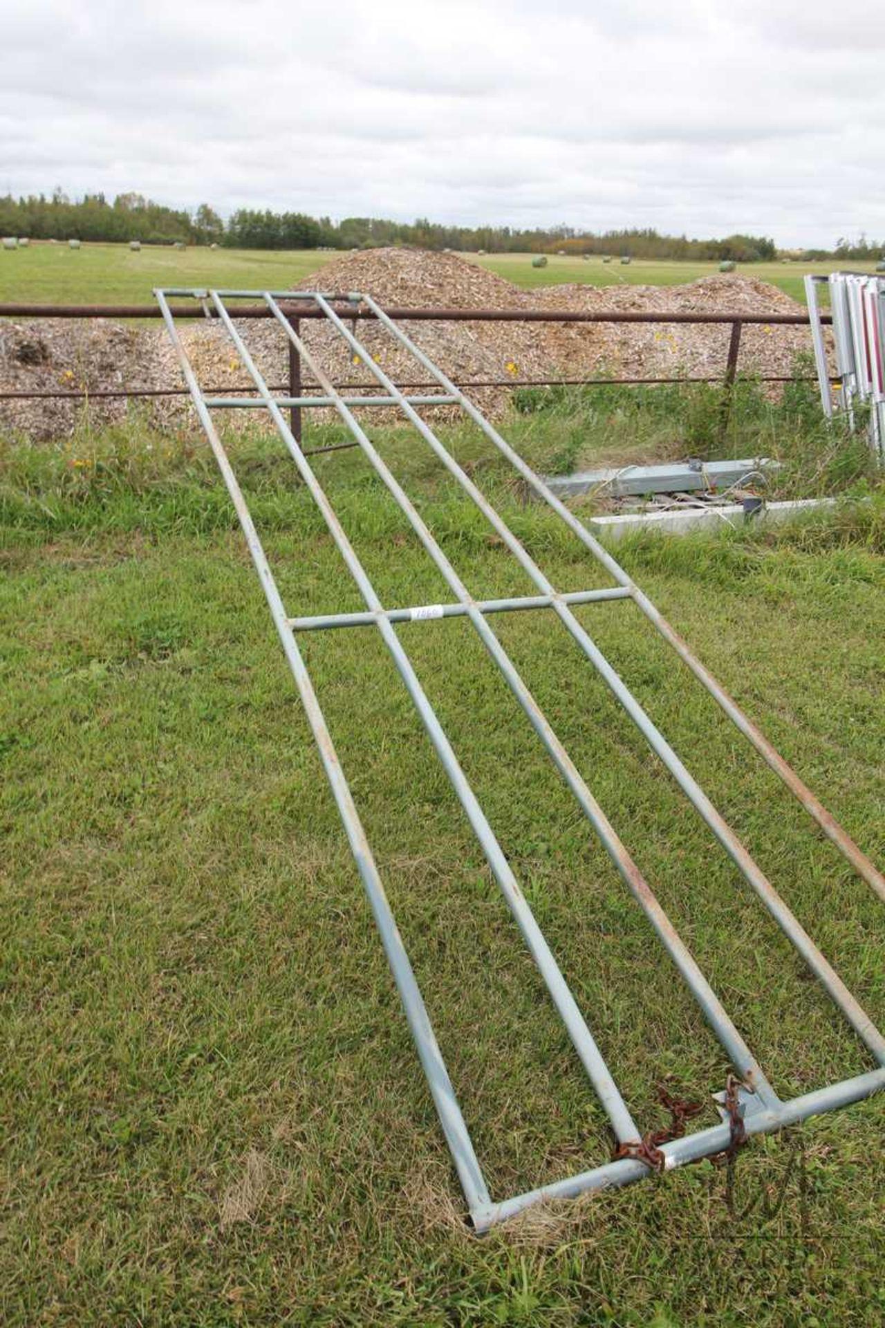 Lot 1060 - 16FT FARM GATE
