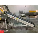 Portable Inclined Conveyor Rigging: $300