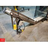 Dorner S/S Frame Product Conveyor with Interlox Belt, And Lenze AC Tech 240 Volt Variable