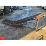 "10' Length Incline Conveyor, 14"" Width, with Conveyor Drive"