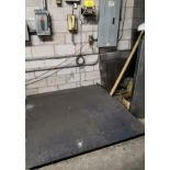 SPECTRUM SYSTEMS FLOOR SCALE W/ DRO (AS-IS)