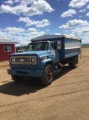 1981 Chev S/A Grain Truck