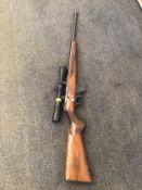 Winchester Wildcat 22