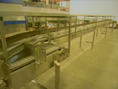 """Accumulation Conveyor, All S/S, 18"""" Wide Intralox Chain (Subject to Bulk Bid in Lot 22)"""