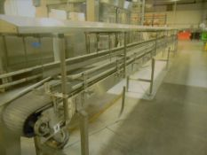 """Accumulation Conveyor, All S/S, 18"""" Wide Intralox Chain (Subject to the Bulk Bid in lot 22)"""