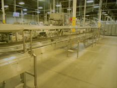 "Accumulation Conveyor, All S/S, 18"" W Intralox Chain (Subject to Bulk Bid in Lot 22)"