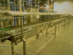 BULK BID FOR LOTS 18, 19, 20 & 21 (4) Accumulation Conveyors (Subject to piecemeal bidding