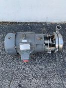 "Tri-Clover 10 hp Centrifugal Pump, Model C328MV21T-S, S/N 253967-02 with 2"" x 3"" Clamp Type S/S"