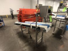 S/S PORTABLE CONVEYOR, S/S CONTROL PANEL, APPX L88'' X W12 X H48''
