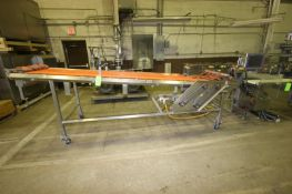 "Straight Section of Conveyor, Aprox. 12' L x 36"" W, with Sterling 1 hp S/S Clad Motor, 1750 RPM ("
