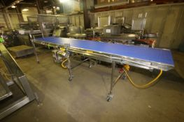 """Straight Section of S/S Product Conveyor, with Aprox. 32"""" W Plastic Interlock Belt, with Sterling"""