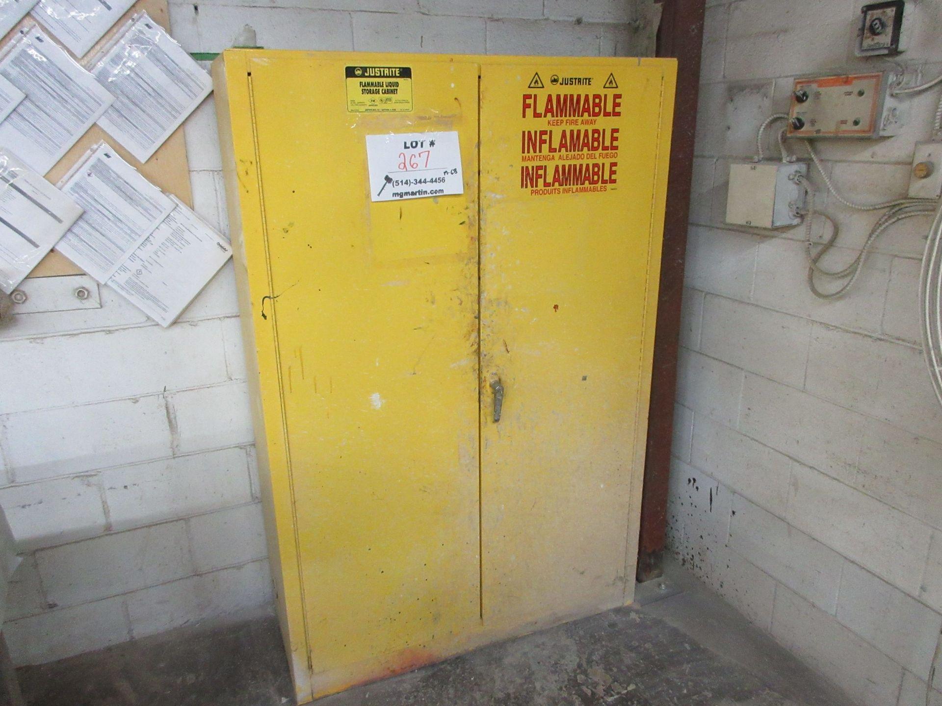 "Lot 267 - Flammable liquid storage cabinet 43""w x 65""h x 18""d"