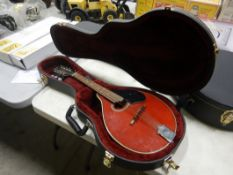 TRADITION MANDOLIN W/CARRYING CASE
