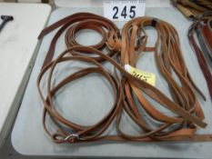 L/O BRIDLE REINS, TIE DOWN STRAP, ETC