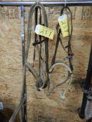 HACKAMORE W/RAWHIDE TRAINING BOSAL, 2- LIGHT WEIGHT RAWHIDE BOSALS W/HEADSTALLS