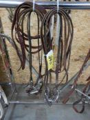 2-EAR BRIDLES W/D-RING SNAFFLE, LONG SHANK SNAFFLE