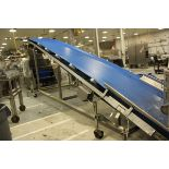 """Inclined Dough Delivery Conveyor, 53"""" X 24'   Rig Fee: $350"""