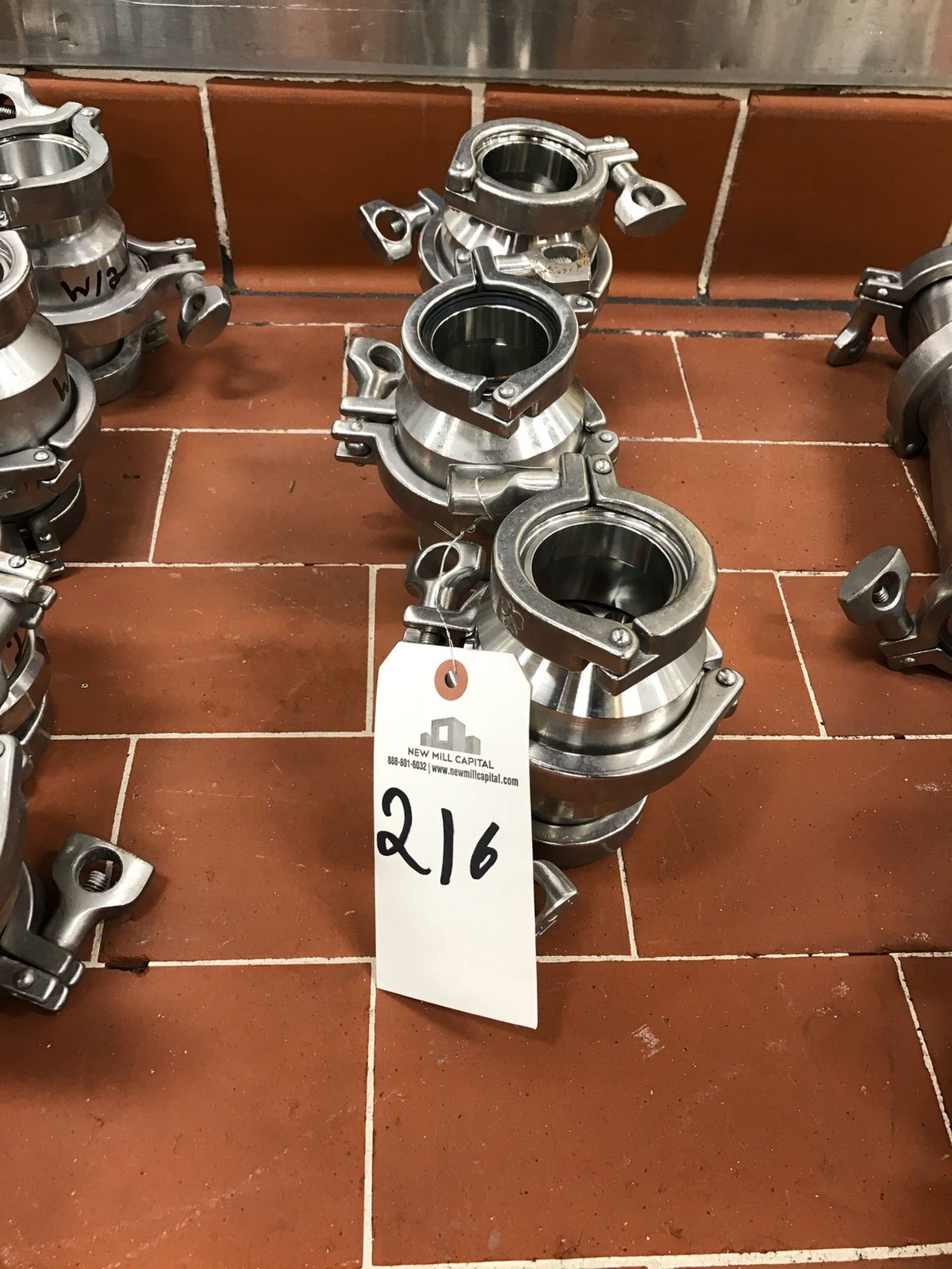 Lot 216 - (4) Check Valves, 2in | Rig Fee: $20
