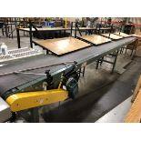 Approx 16' Hytrol Mattop Conveyor, Mild Steel   Rig Fee: $100