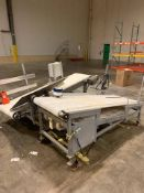 (2) Incline Plastic Belt Conveyors with SS Frame - Loc: NJ | Rig Fee: $125