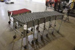 Expandable Flex Conveyor   Rig Fee: $20