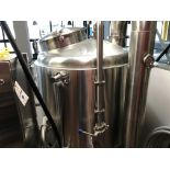 Systech 3 BBL Boil Kettle