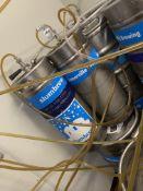 (8) 1/6 Barrel Kegs w/Product
