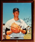 "Jim Lonborg Red Sox Signed Framed Photo ""Jim Lonborg Cy Young 67"" 9""x11"""