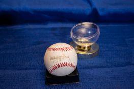 "Autographed Baseball Signed ""Whitey Ford"""