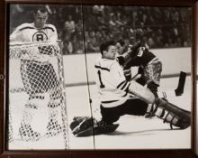 """Ed Johnston Ted Green In Game Framed Photo 15""""x12"""" Cracked Glass"""