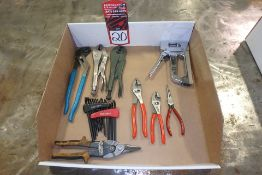 Lot Comprising (2) Vise Grips; Channel Locks; STANLEY 25' Tape Measure; Staple Gun; (2) CRAFTSMAN