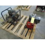 LOT OF PUMPS (2), gas pwrd., assorted