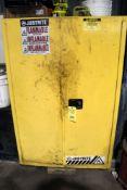 FLAMMABLE STORAGE CABINET, 2-door