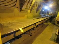 GK Sorting Type Shaker Conveyor, 53 in. x 200 ft.