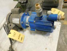 Finish Thompson Pump with 1/3 HP WEG Motor