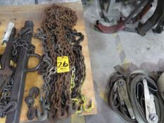 ASSORTED TIE DOWN CHAINS