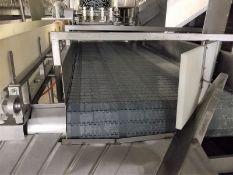 Chiller Discharge Conveyor