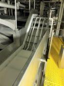 Chiller Transfer Conveyor