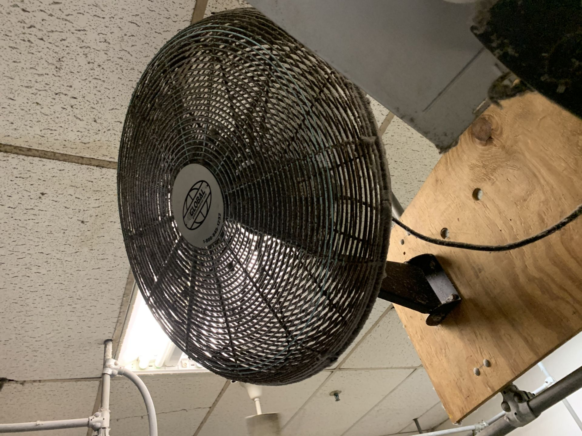 LOLLY COLUMN FANS - Image 2 of 3