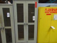 """Steel Storage Cabinet, 36"""" x 24"""" x 78"""""""