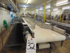 25'L x 4.5'W S.S. Inspection and Cleaning Line w/
