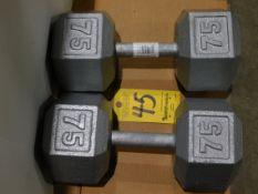 (2) Dumbbells, 75 lb.