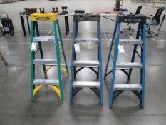 Werner 4' Fiberglass Ladders