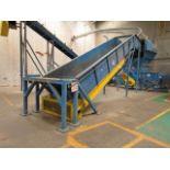 West Salem Machinery Infeed Transfer Conveyer
