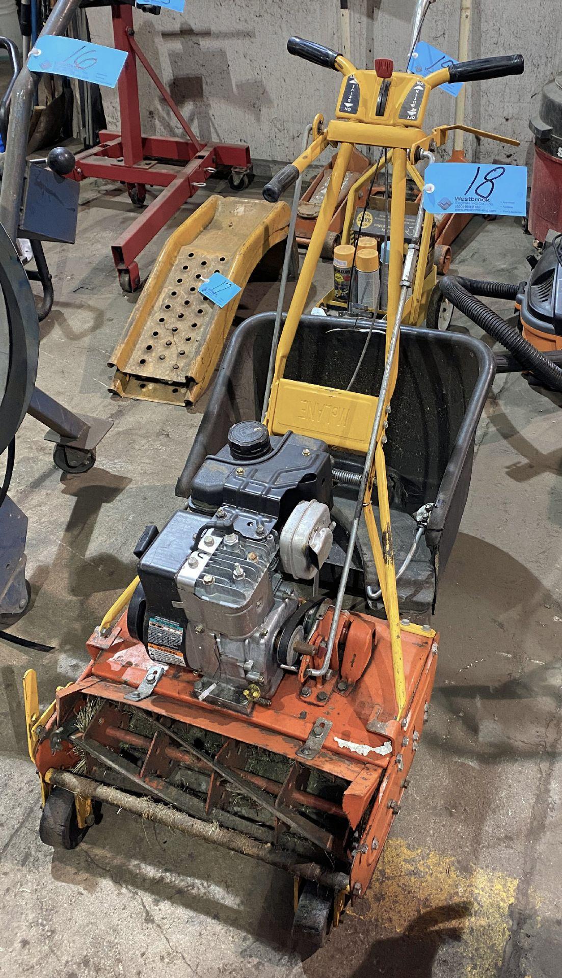 Gas Powered Walk Behind Lawn Mower, Briggs & Stratton 3.5-HP Motor