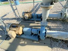 (Lot of 2) Mn 3196 3 X 4 Goulds centrifugal pumps with 30 HP drives