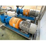 (Lot of 2) Mn 3196 3 X 4 Goulds centrifugal pumps with Siemens 10 HP drives
