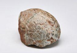 Naturalia Fossilized eggAfrica.