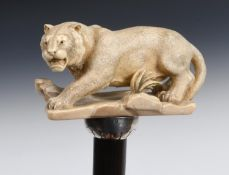A walking stick, the large ivory handle carved a lioness, on an ebonised shaft, 91 cm Large repair